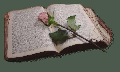 LİSE 3 İÇİN KİTAP TAVSİYELERİ