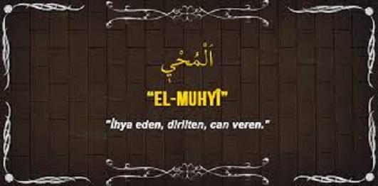 EL-MUHYÎ