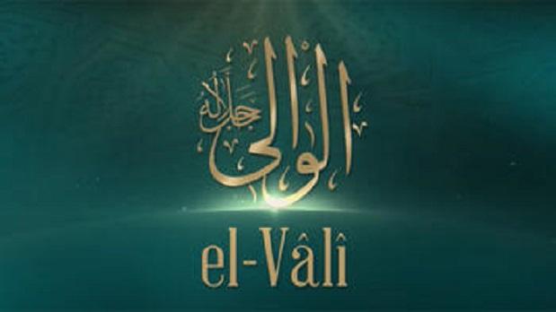 EL-VÂLİ