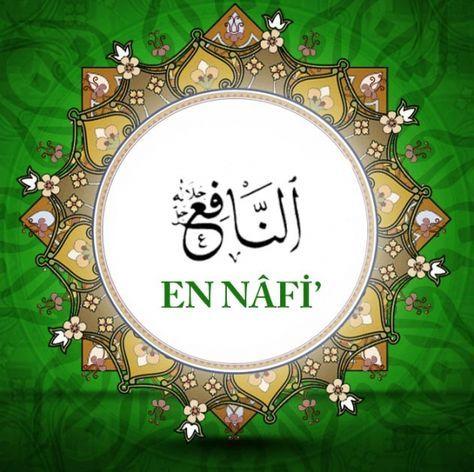EN-NÂFİ